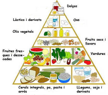 piramide-vegetariana