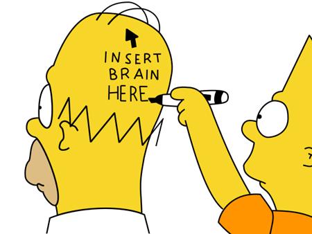 cervell-homer-01