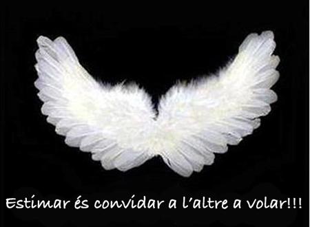 Volar 01